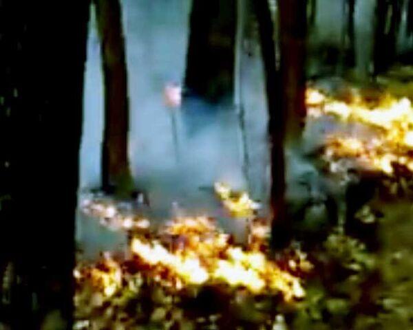 Центральная Россия охвачена пожарами. Видео очевидцев
