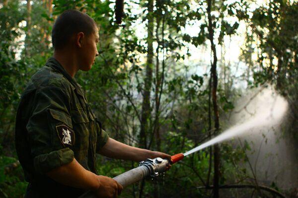 Спасатели победили лесные пожары под Воронежем