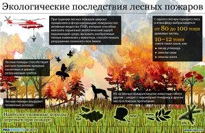Экологические последствия лесных пожаров