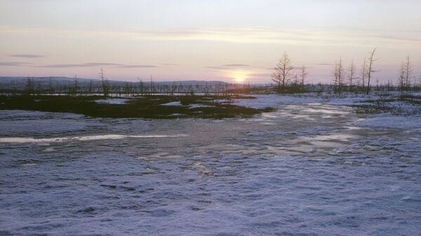Полуостров Таймыр. Архивное фото