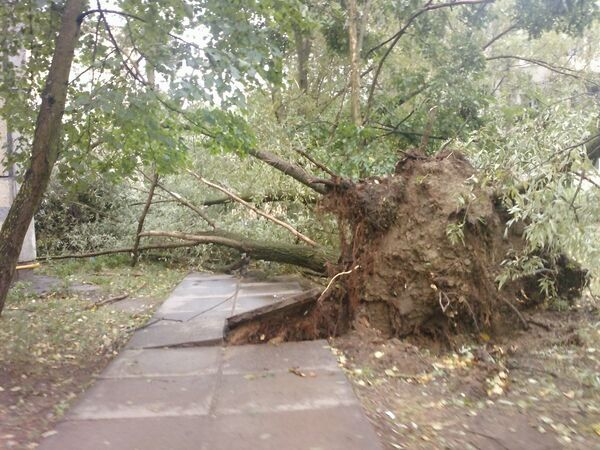 Ураган в Тосно Ленобласти