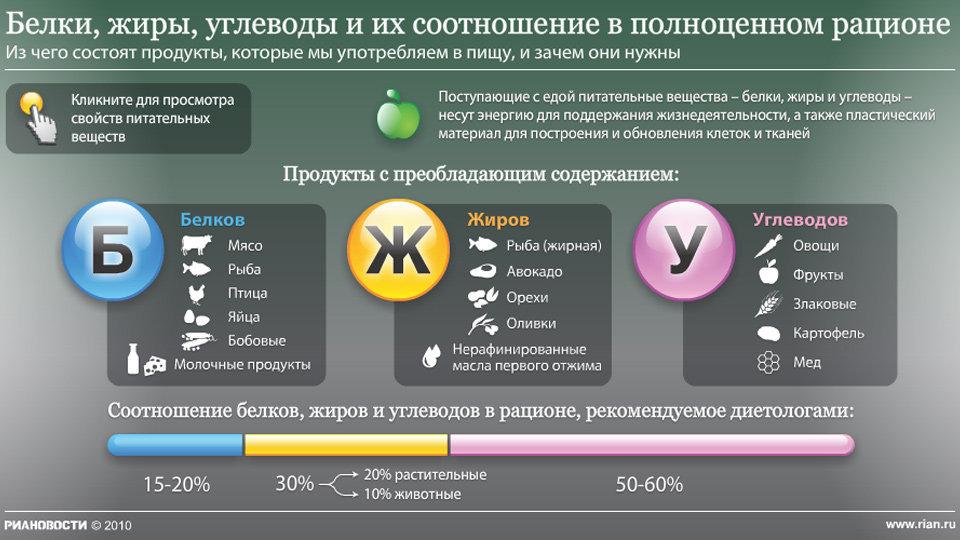 Белки, жиры, углеводы и их соотношение в полноценном рационе