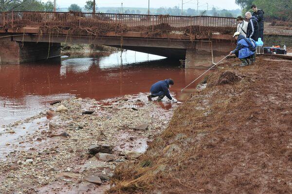 Ядовитые отходы, разлившиеся в Венгрии, попали в рукав Дуная