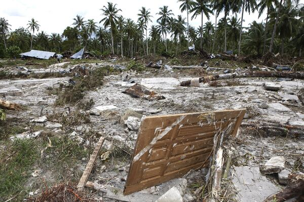 Число жертв цунами в Индонезии достигло 394