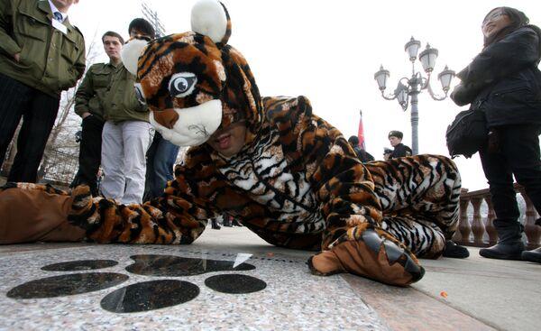 Закладка Тигриной тропы во Владивостоке в рамках молодежного форума по сохранению тигра