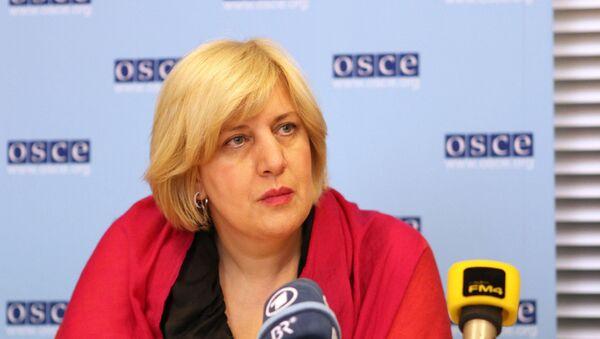 Представитель Организации по безопасности и сотрудничеству в Европе по вопросам свободы СМИ Дуня Миятович. Архив