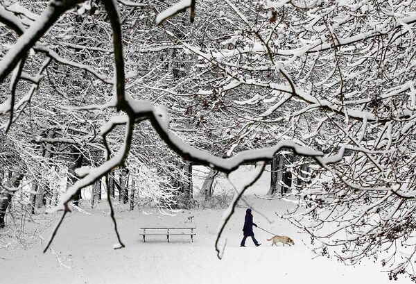 Зимний Брюссель