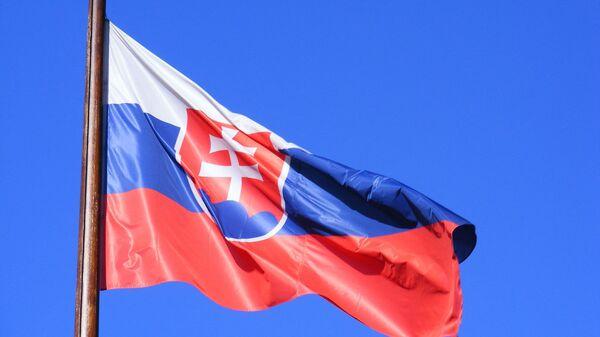 Флаг Словакии, архивное фото