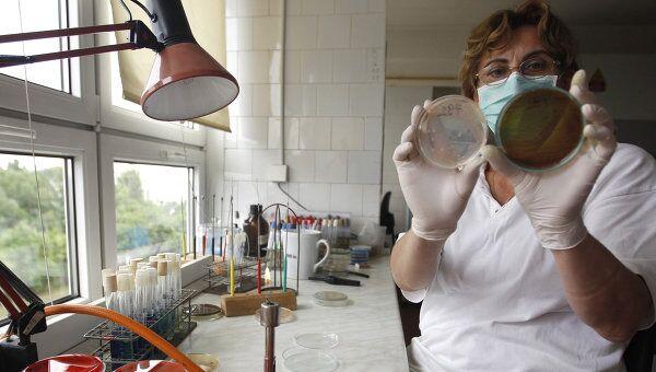 Работник лаборатории проверяет наличие опасных бактерий