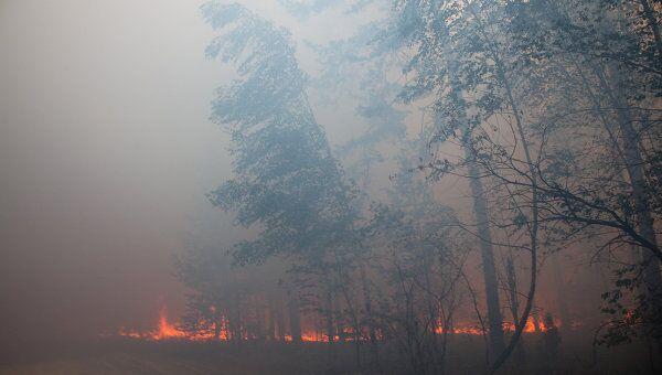 Природные пожары. Архив