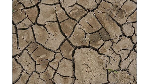 Засуха. Архив