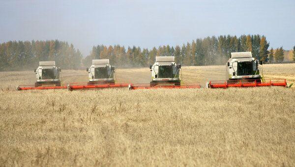 Уборка зерновых