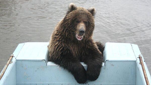 На смотровой вышке возле кордона Озёрный на Курильском озере установлена веб-камера