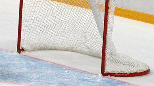 Хоккейные ворота. Архивное фото