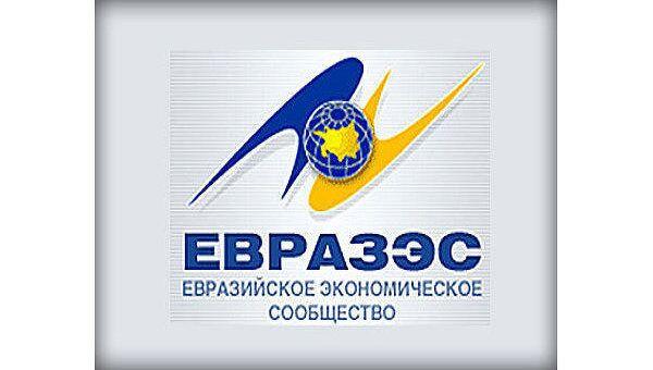 Попытки разрулить межгосударственную водную коллизию делались в рамках ЕврАзЭС, поскольку за исключением Туркмении все страны ЦА входили в организацию.