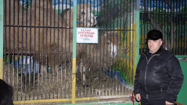 Директор пятигорского зоопарка Лигер Александр Исраэльян. Архив