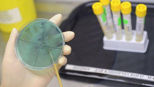 В РФ произведут 40 млн доз вакцины против гриппа А/H1N1