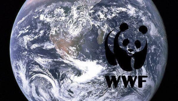 WWF приветствует передачу сферы охоты в ведение Минприроды РФ