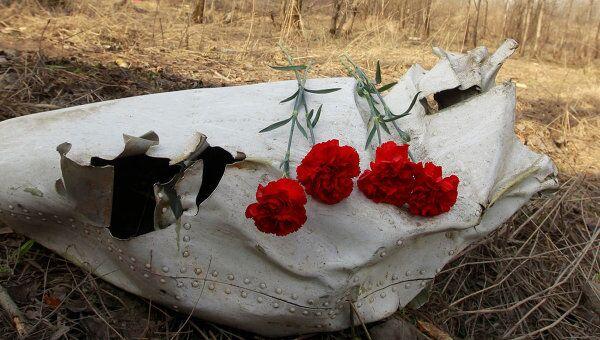 Обломки самолета на месте авиакатастрофы под Смоленском
