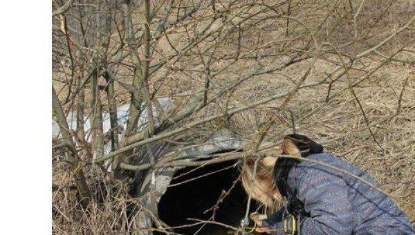 Поиски ребенка велись на территории садовых участков