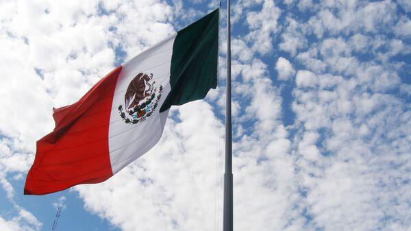 Флаг Мексики. Архив