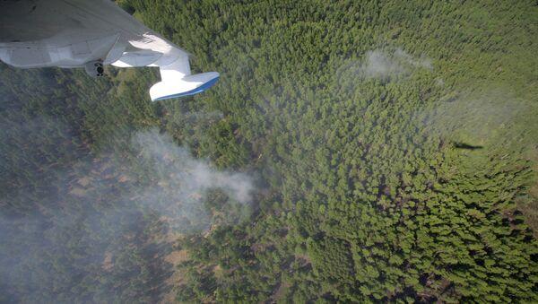 Тушение лесных пожаров в республике Тыва. Архив