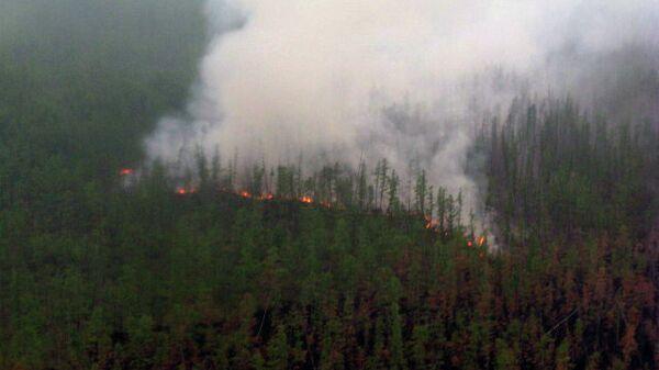 Лесной пожар в Якутии. Архивное фото
