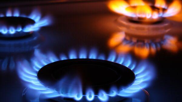 Газовые конфорки. Архивное фото