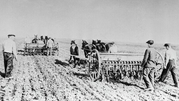 Сев на полях колхоза, архивное фото