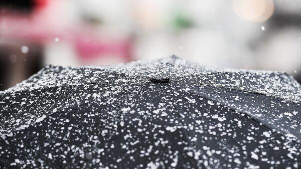 Зонт покрытый снегом