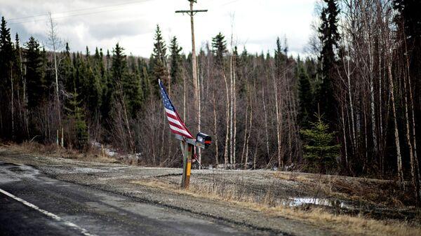 Американский флаг рядом с почтовым ящиком на дороге в штате Аляска