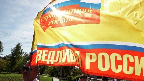 Флаг партии Справедливая Россия. Архивное фото