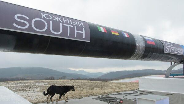 Начало строительства газопровода Южный поток, архивное фото
