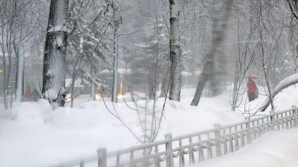 Снегопад в Подмосковье. Архивное фото
