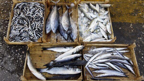 Продажа рыбы. Архивное фото
