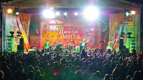 Фестиваль Дикая мята