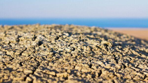 Что осталось от Аральского моря. Архивное фото.