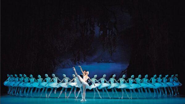 Балет Лебединое озеро в рамках фестиваля Звезды белых ночей