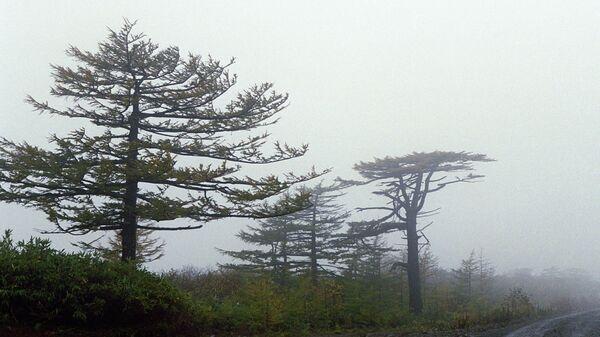 Остров Итуруп на Сахалине. Архивное фото