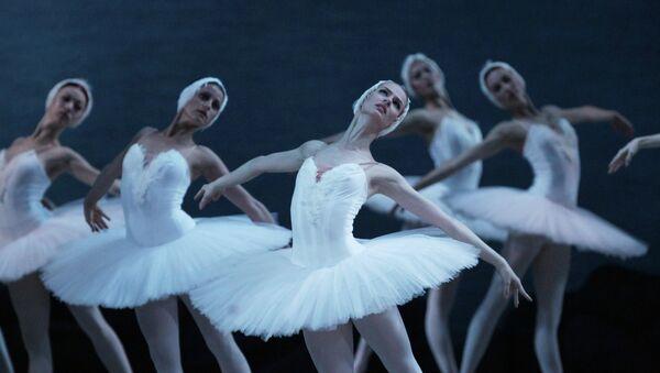 Лебединое озеро в Мариинском театре. Архивное фото