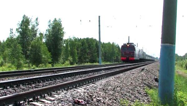 Локомотив сбил пятерых железнодорожников в Приамурье. Кадры с места ЧП