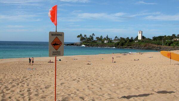 Предупреждение о наличии акул на Гаваях