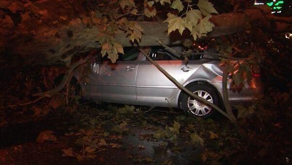 Поваленные деревья и разбитые машины - последствия урагана в Сочи