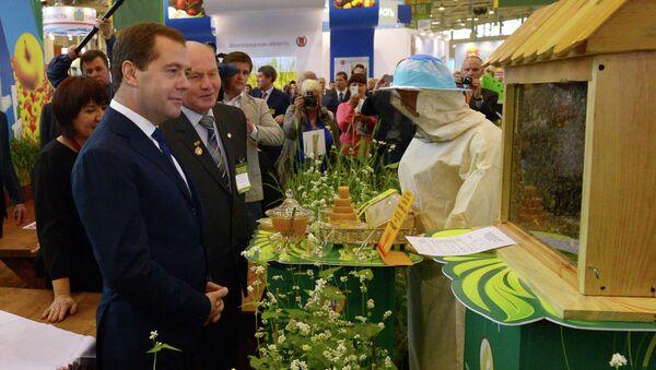 Д.Медведев на 15-й российской агропромышленной выставке Золотая осень-2013