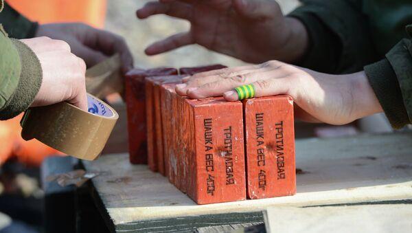 Тротиловые шашки. Архивное фото