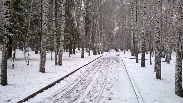 В Лагерном саду Томска