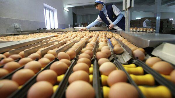 Сортировка куриных яиц