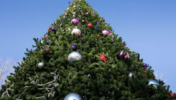 Новогодняя елка во Владивостоке. Архивное фото.