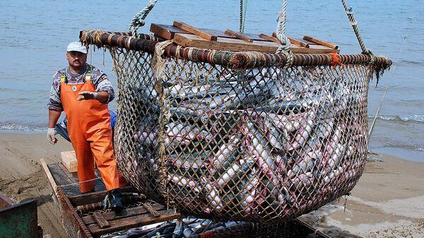 Рыболовецкое хозяйство, архивное фото