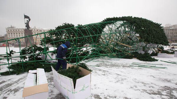 Во Владивостоке упала главная новогодняя елка. Фото с места события